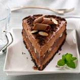 Mocha Almond Fudge Ice Cream Torte