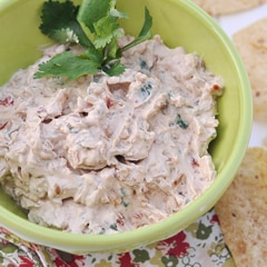 Turn Up the Heat Chipotle and Cilantro Dip